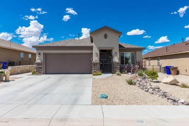 3025 Agua Ladoso Avenue, Las Cruces, NM 88012 (MLS #2001857) :: Arising Group Real Estate Associates