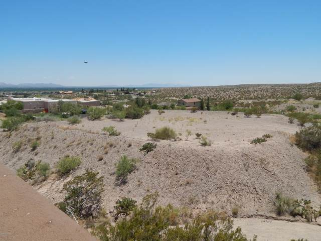 590 Larkspur Way, Las Cruces, NM 88007 (MLS #2001869) :: Better Homes and Gardens Real Estate - Steinborn & Associates