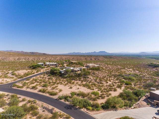 6708 Desert Blossom Rd. Road, Las Cruces, NM 88007 (MLS #2001884) :: Better Homes and Gardens Real Estate - Steinborn & Associates