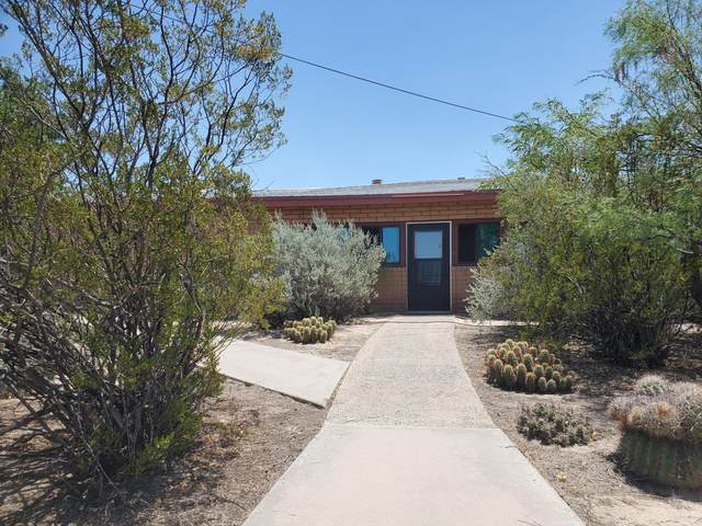 1561 Tecolote Trail, Las Cruces, NM 88012 (MLS #2001885) :: Better Homes and Gardens Real Estate - Steinborn & Associates