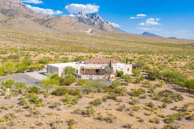 15414 Space Murals Lane, Las Cruces, NM 88011 (MLS #2001914) :: Agave Real Estate Group
