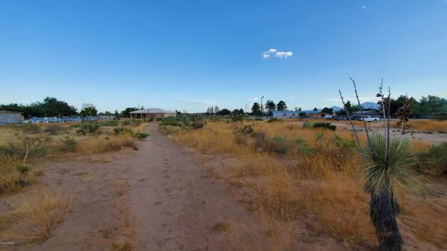 644 Mesilla View Drive, Chaparral, NM 88081 (MLS #2001931) :: Better Homes and Gardens Real Estate - Steinborn & Associates