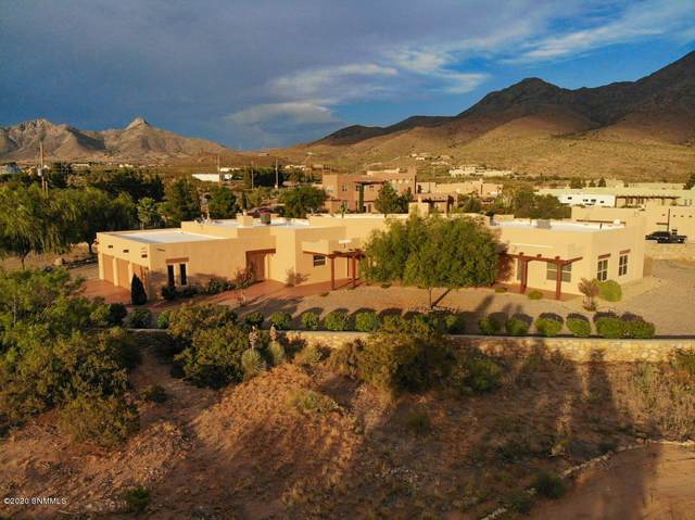 15214 Space Murals Lane, Las Cruces, NM 88011 (MLS #2001959) :: Better Homes and Gardens Real Estate - Steinborn & Associates