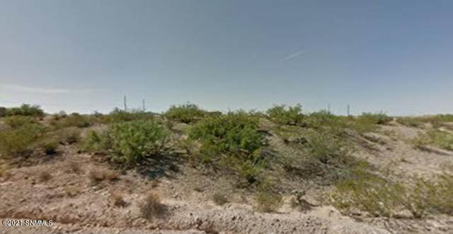 4620 Real Del Sur, Las Cruces, NM 88011 (MLS #2001960) :: Better Homes and Gardens Real Estate - Steinborn & Associates