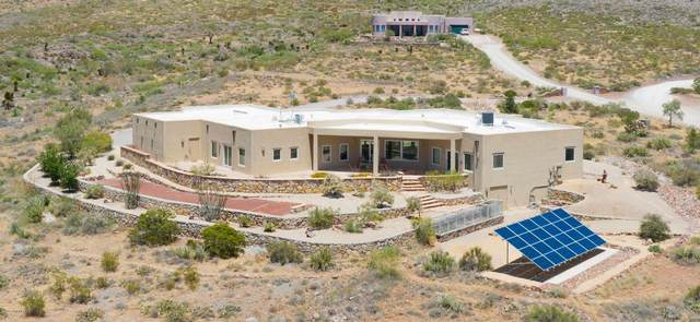 149 Pena Blanca Loop, Las Cruces, NM 88011 (MLS #2002003) :: Las Cruces Real Estate Professionals