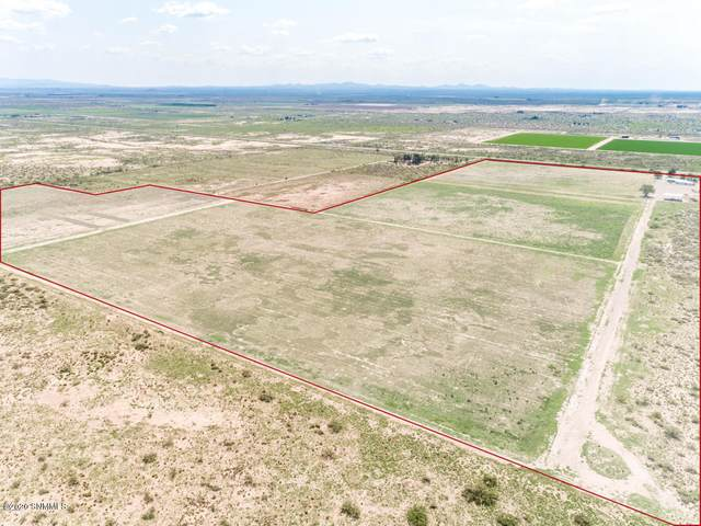 11065 Columbus Road, Deming, NM 88030 (MLS #2002005) :: Better Homes and Gardens Real Estate - Steinborn & Associates