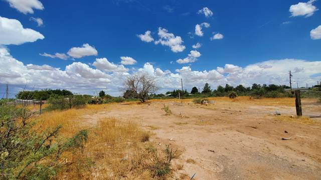 625-1 Maguey, Chaparral, NM 88081 (MLS #2002038) :: Arising Group Real Estate Associates