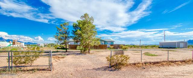 20 Sunrunner Avenue, Las Cruces, NM 88012 (MLS #2002100) :: Better Homes and Gardens Real Estate - Steinborn & Associates
