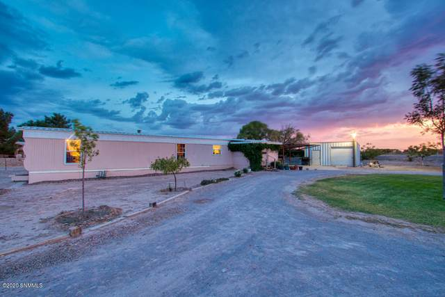 114 Cilantro Lane, Vado, NM 88072 (MLS #2002121) :: Better Homes and Gardens Real Estate - Steinborn & Associates