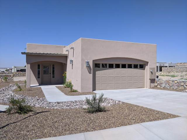 2901 Bink Place, Las Cruces, NM 88011 (MLS #2002167) :: Agave Real Estate Group