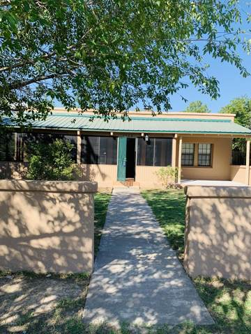 3408 Linden Avenue, Mesilla Park, NM 88047 (MLS #2002204) :: Better Homes and Gardens Real Estate - Steinborn & Associates