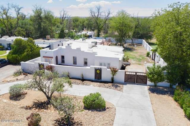 1224 Calle De El Paso, Mesilla, NM 88046 (MLS #2002289) :: Las Cruces Real Estate Professionals
