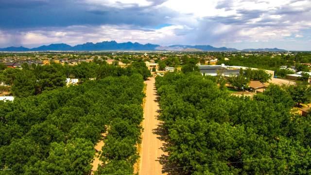 0000 Burke Road, Las Cruces, NM 88007 (MLS #2002290) :: Agave Real Estate Group
