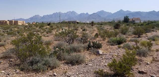 00 Alamo  Mine Trail, Las Cruces, NM 88011 (MLS #2002336) :: Better Homes and Gardens Real Estate - Steinborn & Associates
