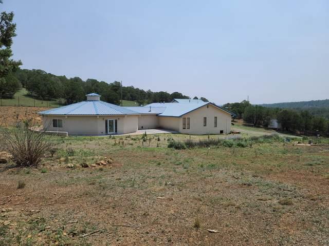 156 Juniper Springs Road, Nogal, NM 88341 (MLS #2002359) :: Better Homes and Gardens Real Estate - Steinborn & Associates
