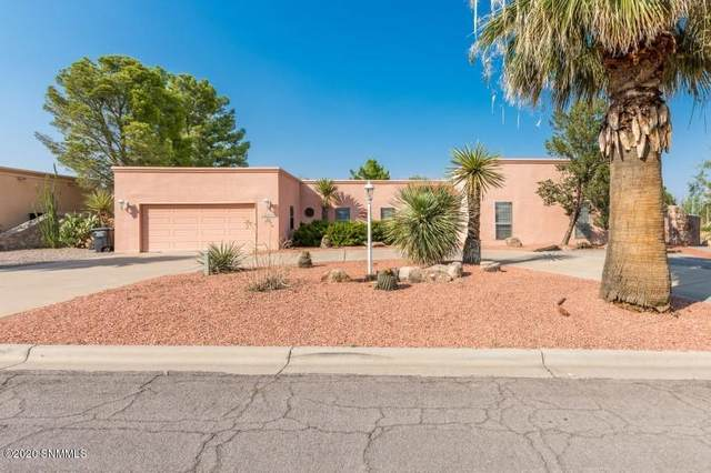 6600 Vista De Oro, Las Cruces, NM 88007 (MLS #2002377) :: Agave Real Estate Group
