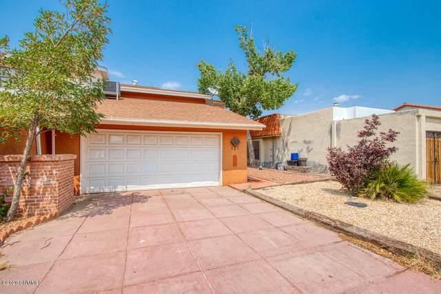 127 Sun Season Road, Santa Teresa, NM 88008 (MLS #2002379) :: Agave Real Estate Group