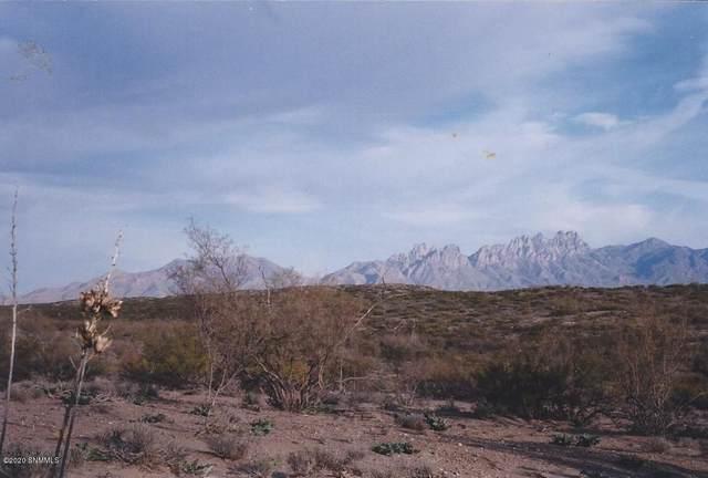 000 Sandhill Road, Las Cruces, NM 88012 (MLS #2002394) :: Arising Group Real Estate Associates