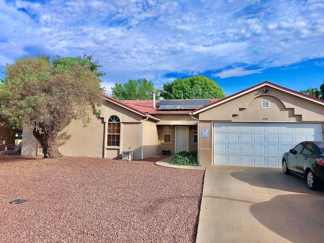 341 Wall Avenue, Las Cruces, NM 88001 (MLS #2002454) :: Agave Real Estate Group