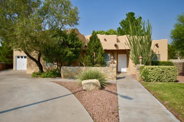2003 Nena Court, Las Cruces, NM 88007 (MLS #2002507) :: Las Cruces Real Estate Professionals