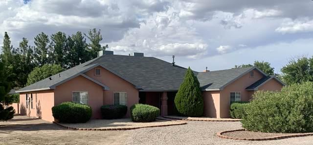 4415 Sandollar Way, Las Cruces, NM 88007 (MLS #2002543) :: Better Homes and Gardens Real Estate - Steinborn & Associates