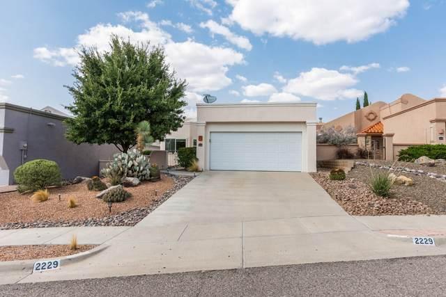 2229 San Felipe Avenue, Las Cruces, NM 88011 (MLS #2002605) :: Las Cruces Real Estate Professionals