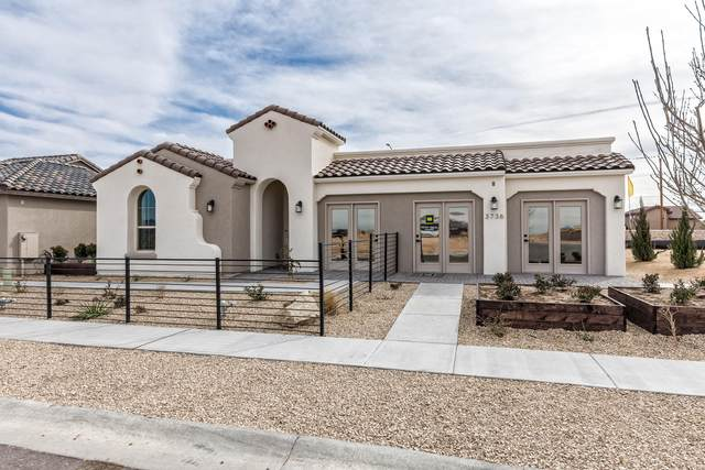 3736 Santa Rosa Avenue, Las Cruces, NM 88012 (MLS #2002616) :: Agave Real Estate Group