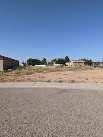 0 Vista De Tierra Road, Las Cruces, NM 88012 (MLS #2002638) :: Better Homes and Gardens Real Estate - Steinborn & Associates
