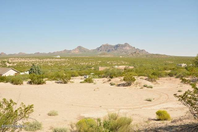 1900 Rincon De Amigos, Las Cruces, NM 88012 (MLS #2002647) :: Arising Group Real Estate Associates