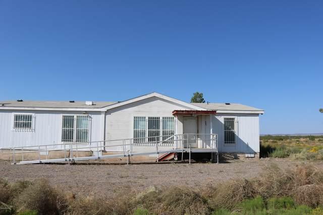 12330 NW Dwyer Road, Deming, NM 88030 (MLS #2002660) :: Arising Group Real Estate Associates