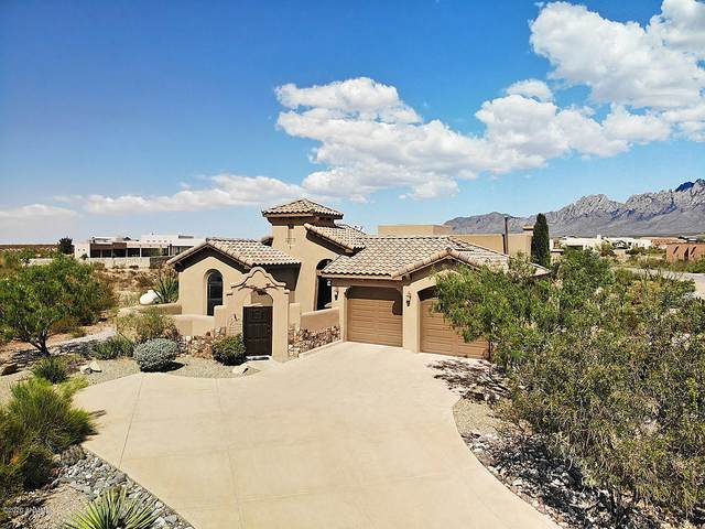8565 Mescal Bean Court, Las Cruces, NM 88011 (MLS #2002665) :: Better Homes and Gardens Real Estate - Steinborn & Associates