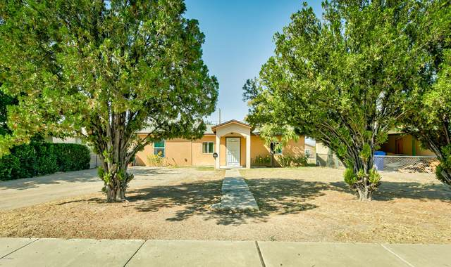 806 Chaparro Street, Las Cruces, NM 88001 (MLS #2002686) :: Better Homes and Gardens Real Estate - Steinborn & Associates