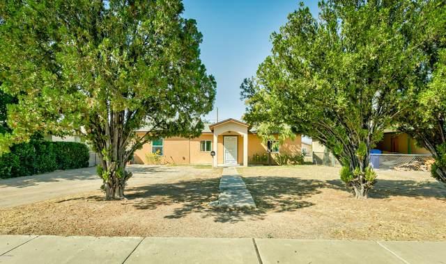 806 Chaparro Street, Las Cruces, NM 88001 (MLS #2002686) :: Arising Group Real Estate Associates