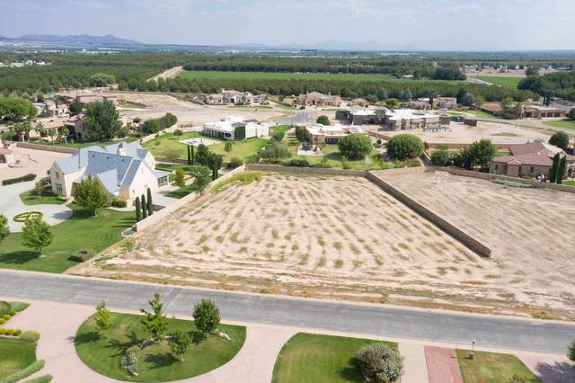 1975 Tapestry Circle, Las Cruces, NM 88005 (MLS #2002702) :: Better Homes and Gardens Real Estate - Steinborn & Associates