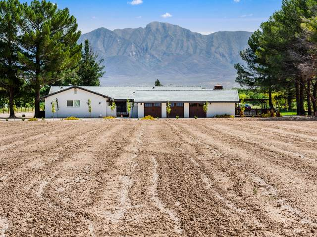 1300 S Highway 28, Anthony, NM 88021 (MLS #2002729) :: Better Homes and Gardens Real Estate - Steinborn & Associates