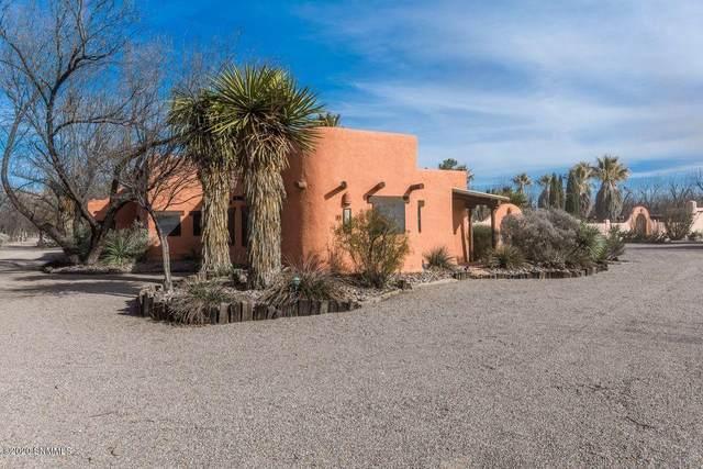 4601-A Snow Road, Las Cruces, NM 88005 (MLS #2002750) :: Arising Group Real Estate Associates
