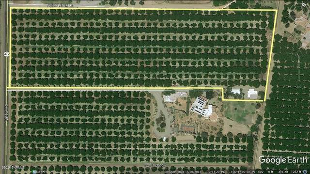 4601-C Snow Road, Las Cruces, NM 88005 (MLS #2002752) :: Arising Group Real Estate Associates