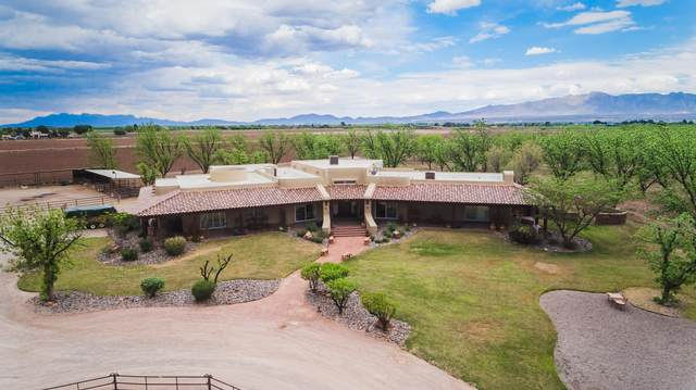 7003 Mcnutt Road, Anthony, NM 88021 (MLS #2002760) :: Better Homes and Gardens Real Estate - Steinborn & Associates