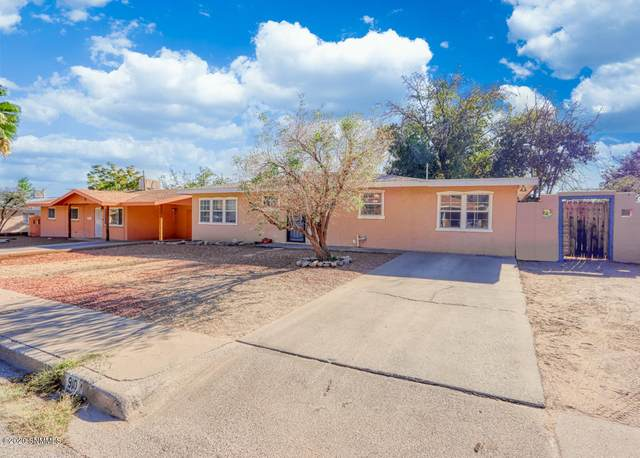 910 Lees Drive, Las Cruces, NM 88001 (MLS #2002766) :: Better Homes and Gardens Real Estate - Steinborn & Associates