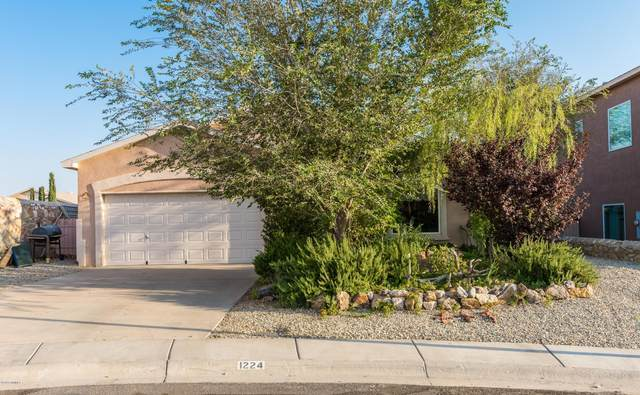 1224 Gunsight Peak Court, Las Cruces, NM 88012 (MLS #2002775) :: Las Cruces Real Estate Professionals
