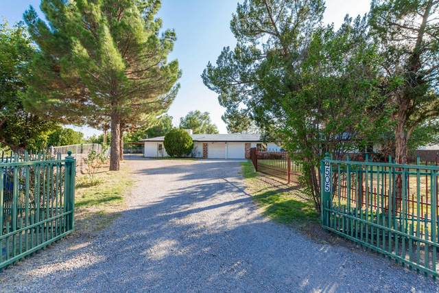 4505 Sells Place, Las Cruces, NM 88007 (MLS #2002870) :: Better Homes and Gardens Real Estate - Steinborn & Associates