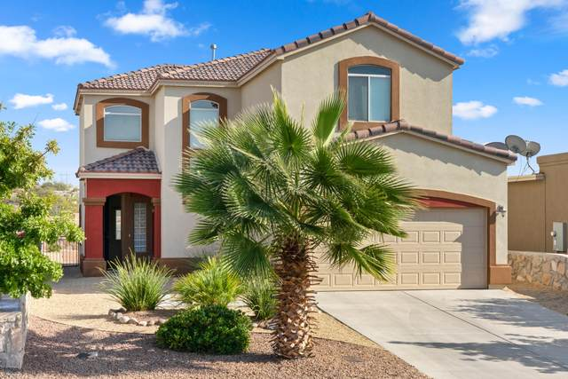 3620 Ascencion Circle, Las Cruces, NM 88012 (MLS #2002914) :: Arising Group Real Estate Associates