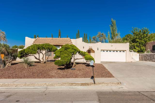 3318 Mercury Lane, Las Cruces, NM 88012 (MLS #2002922) :: Better Homes and Gardens Real Estate - Steinborn & Associates