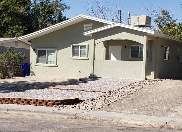 2309 Solar Way, Las Cruces, NM 88001 (MLS #2002936) :: Better Homes and Gardens Real Estate - Steinborn & Associates