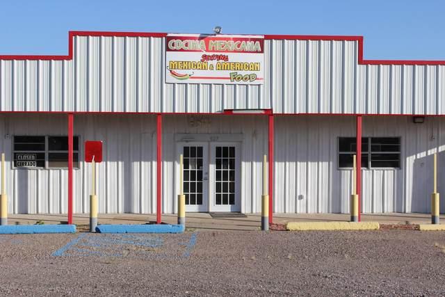 827 Fort Selden Road, Radium Springs, NM 88054 (MLS #2002976) :: Better Homes and Gardens Real Estate - Steinborn & Associates