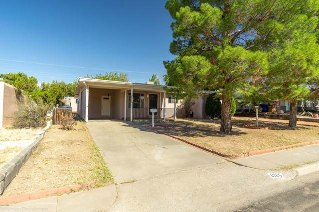 2125 Bellamah Drive, Las Cruces, NM 88001 (MLS #2003005) :: Las Cruces Real Estate Professionals