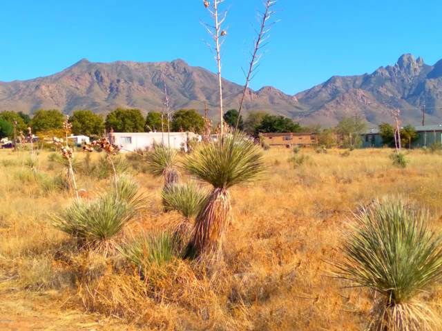 9585 Antares Street, Las Cruces, NM 88012 (MLS #2003058) :: Better Homes and Gardens Real Estate - Steinborn & Associates