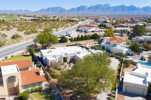 2734 Custer Way, Las Cruces, NM 88011 (MLS #2003088) :: Agave Real Estate Group