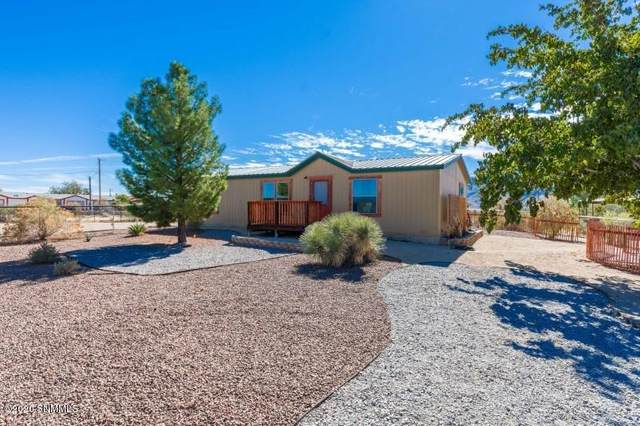 11621 S Track Trail, Radium Springs, NM 88054 (MLS #2003096) :: Agave Real Estate Group