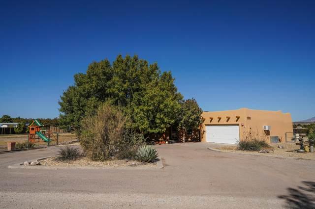 281 Stone Drive, Mesilla Park, NM 88047 (MLS #2003134) :: United Country Real Estate Revolution